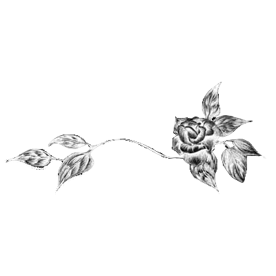 Black Flower Divider transparent PNG - StickPNG Transparent Black And White Flowers Tumblr