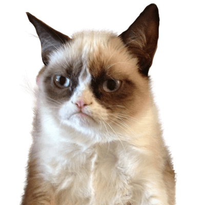 Grumpy Cat Blue Background