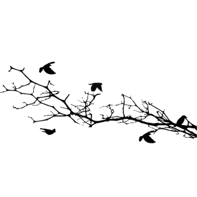 Bird Silhouettes on A Branch transparent PNG - StickPNG