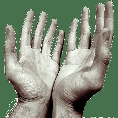 Hands Praying Open