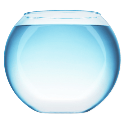 how to take care of fish in glass bowl