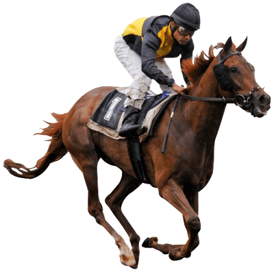 Race Horse And Jockey Vintage Clipart Transparent Png