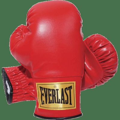 Boxing Sport Man transparent PNG - StickPNG
