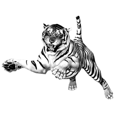 Tiger jumping at you clipart