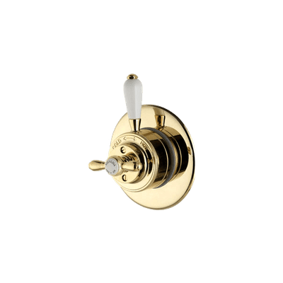 Gold Shower Thermostat