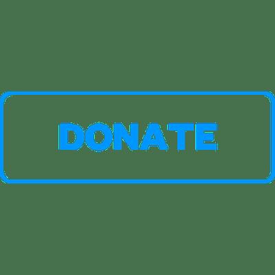 Simple Blue Outline Donate Button