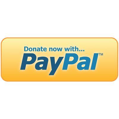 paypal pay now button png wwwpixsharkcom images