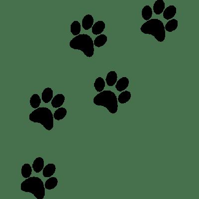paw prints transparent png images stickpng cheetah clip art stencil cheetah clip art free