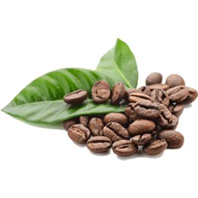 Coffee Beans In Hands transparent PNG - StickPNG