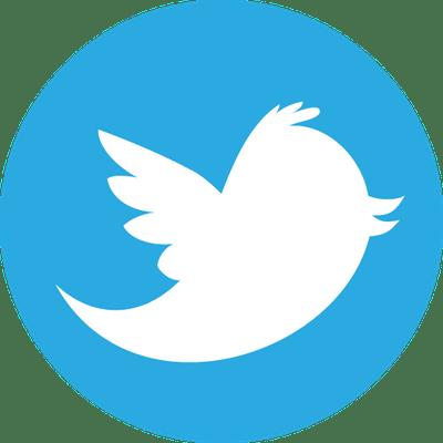 Resultado de imagen de icono twitter