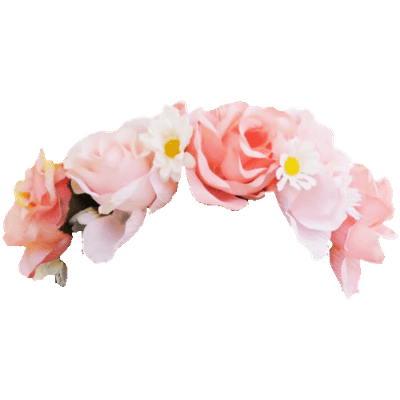 Rose Flower Crown Snapchat Filter Transparent Png Stickpng