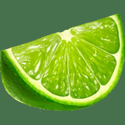Lime Slice transparent PNG - StickPNG