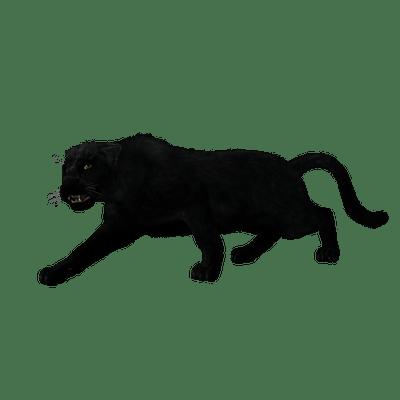 Black Panther Full Body Transparent Png Stickpng