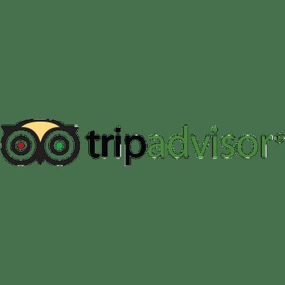 Tripadvisor Logo Transparent PNG