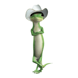 Geico Gecko With Cowboy Hat Transparent Png Stickpng Are you searching for frog hat png images or vector? stickpng